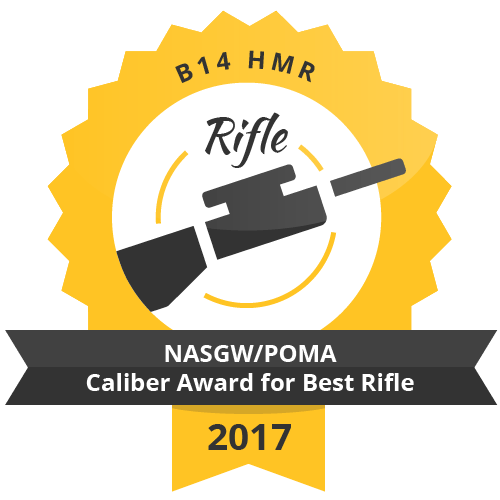 b14 HMR NASGWPOMA Caliber Award for Best rifle