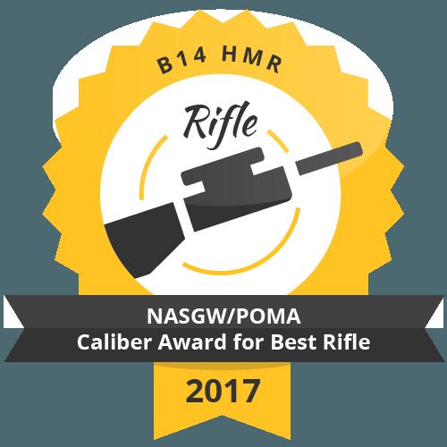 b14 HMR NASGWPOMA Caliber Award for Best rifle